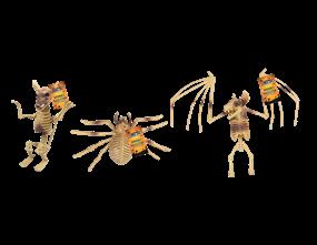 Animal Skeleton PDQ