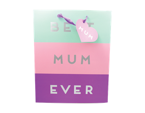 Wholesale Mother's Day Large Gift Bags | Gem Imports Ltd